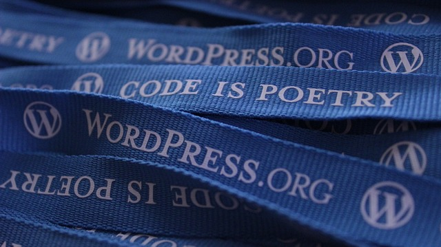 How and Why To Choose An Accessibility Ready WordPress Theme